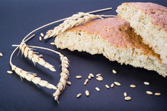 Wheat bread and Wheat Royalty Free Stock Photos