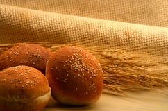 Wheat bun. Studio shot of wheat bun along with wheat grains Royalty Free Stock Image