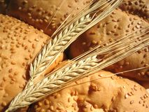 Wheat and bun Stock Photo