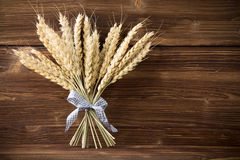 Wheat. Royalty Free Stock Images
