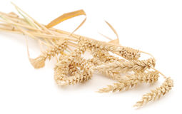 Wheat Bunch Stock Photos
