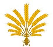 Wheat Bundle Royalty Free Stock Photography