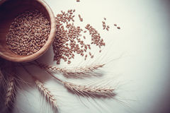 Wheat bundle and cereals. Wheat harvest, photo with copy space Stock Photo