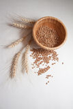Wheat bundle and cereals. Wheat harvest, photo with copy space Stock Photos