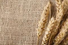 Wheat and Burlap Stock Photo