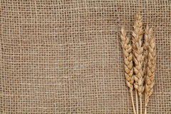 Wheat on burlap Royalty Free Stock Photography