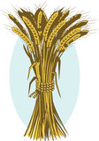 Wheat Bushel Royalty Free Stock Image
