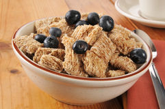 Wheat cereal with blueberries Royalty Free Stock Image