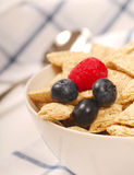 Wheat cereal with blueberries and raspberry Royalty Free Stock Photos