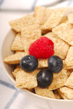 Wheat cereal with blueberries and raspberry Stock Photos