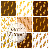 Wheat cereal grain, rye ears seamless patterns set Royalty Free Stock Images