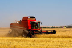 Wheat combine harvester. Red combine harvesting on wheat field Royalty Free Stock Photos