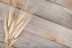 Wheat cones on wood table Stock Image