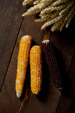 Wheat and corn. Wheat Seed and corn in dark wood table Royalty Free Stock Photography