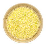 Wheat couscous Stock Images
