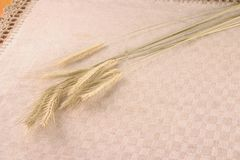 Wheat crops over linen tablecloth Stock Image