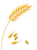 Wheat ear stock illustration