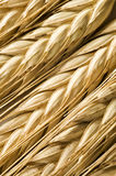 Wheat ear close up Stock Photos
