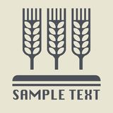 Wheat ear and grain icon or sign. Vector illustration Stock Photos
