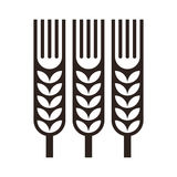 Wheat ear icon Stock Images