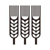 Wheat ear icon royalty free illustration