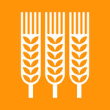 Wheat ear icon Royalty Free Stock Images