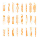 Wheat ear icon set Stock Photography