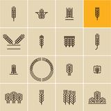 Wheat ear icon set, wheat ears royalty free illustration