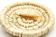 Wheat ear on phloem plate Stock Photo