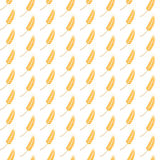 Wheat ear seamless pattern background Royalty Free Stock Images
