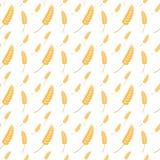 Wheat ear seamless pattern background Stock Image