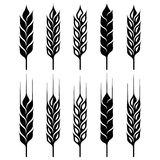 Wheat ear sign set. Isolated from background vector illustration