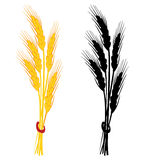 Wheat ear vector illustration Royalty Free Stock Images