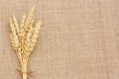 Wheat Ears. Border on Burlap background.with copy-space Royalty Free Stock Photo