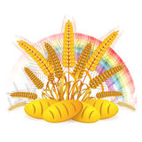 Wheat ears. With bread and rainbow Stock Images