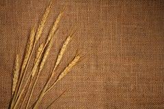 Wheat ears. Border on burlap background Royalty Free Stock Photo