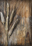Wheat ears. On an old wooden plank Stock Photo