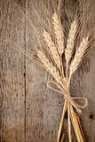 Wheat ears. On wooden background Stock Photos