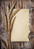 Wheat Ears. And vintage paper on wooden plank Royalty Free Stock Photos