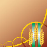 Wheat ears background Royalty Free Stock Photography