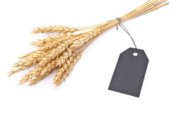 Wheat ears with black tag Royalty Free Stock Photo