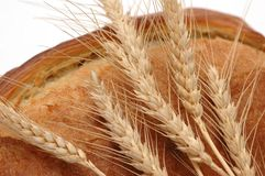 Wheat ears and bread loaf isol Stock Image