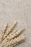 Wheat ears on burlap background vertical Stock Photography