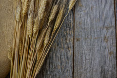 Wheat Ears. On Burlap and Wood Background Royalty Free Stock Images