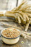 Wheat ears. In cup on a wooden background Stock Photo