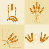 Wheat ears, eco products, wheat ear icon. Flat design,  illustration Royalty Free Stock Images