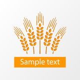 Wheat ears emblem eps10. Wheat ears emblem on gray background eps10 Stock Image