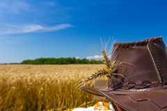 Wheat ears on farmer's hat. Royalty Free Stock Images