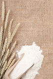 Wheat ears and flour Stock Photo