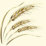 Wheat ears frame, border or corner element. Three gold ripe wheat ears with leaves on beige background. Can be used as frame, corner or border element Stock Photography